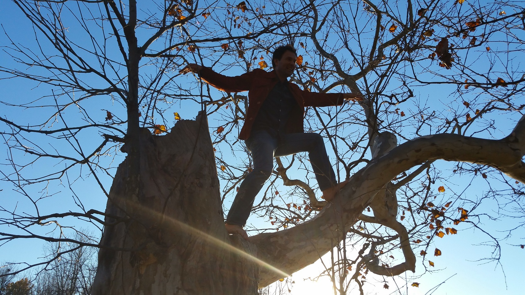 ben-in-tree-at-coves-resized
