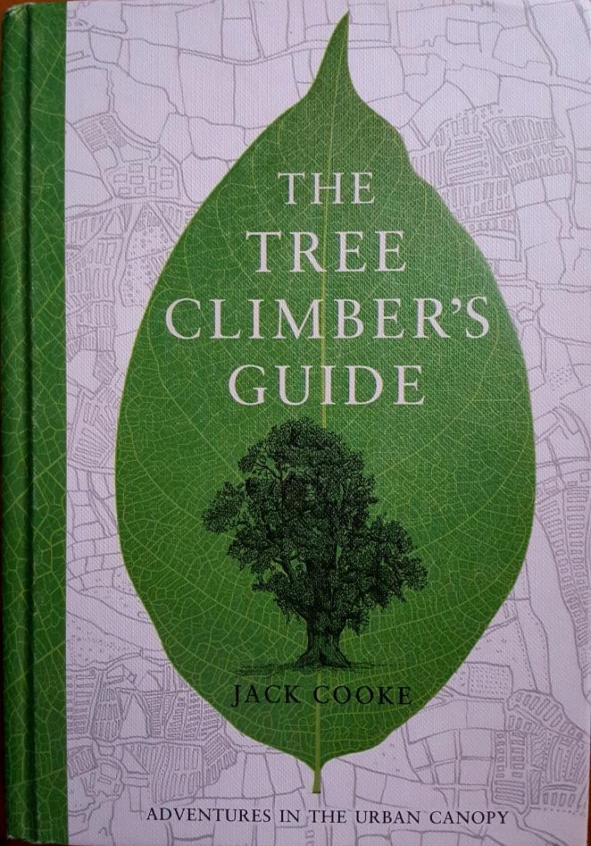 tree-climbers-guide