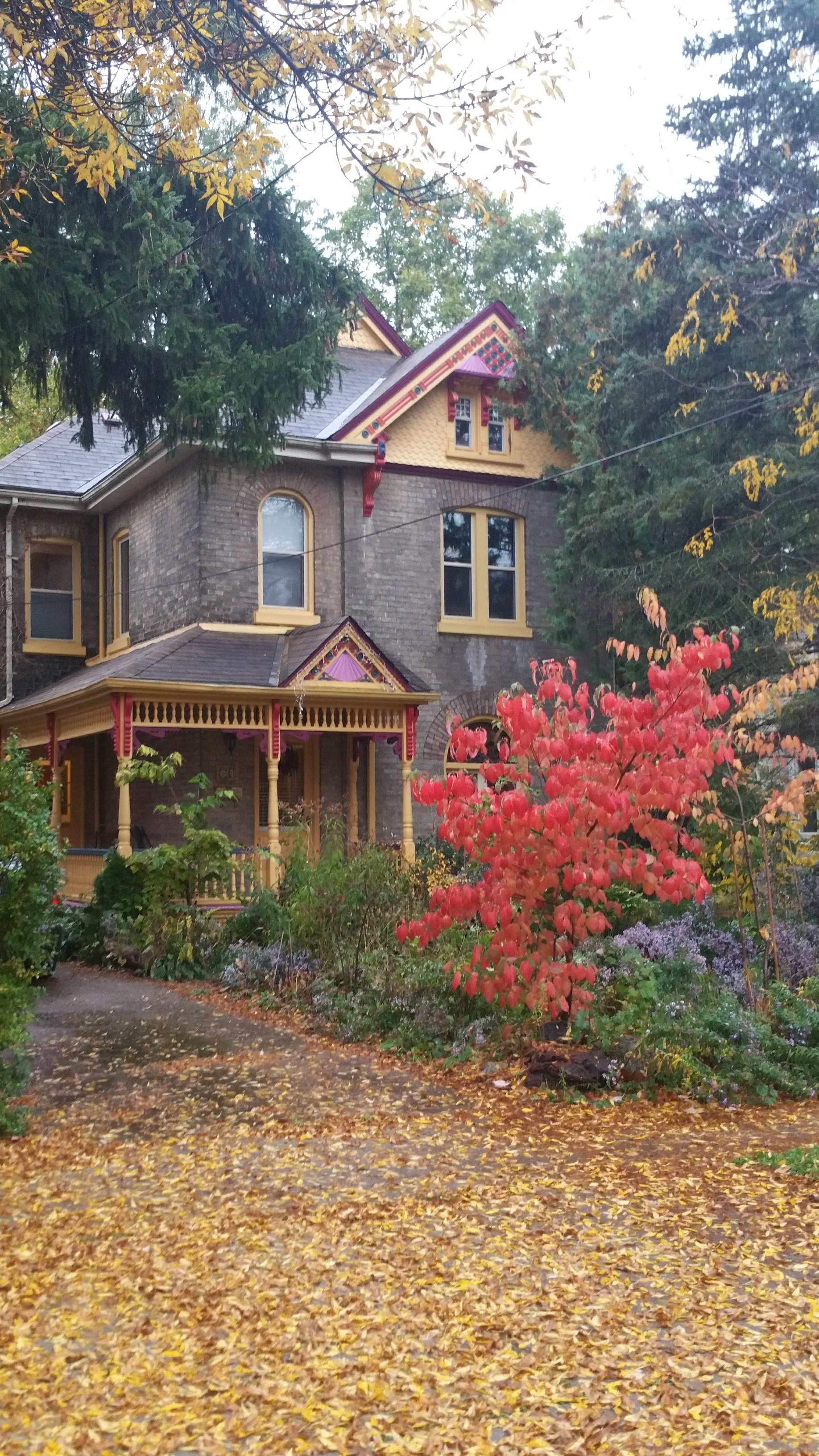 Fall Leaves House Native Garden.jpg